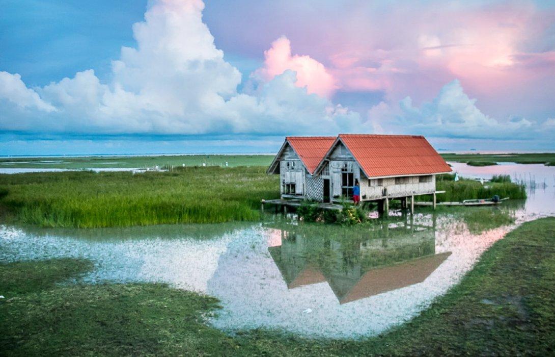 สวัสดีเช้าวันใหม่ ชื่นใจในทะเลน้อย เรื่อง/ภาพ by.ลานลม
