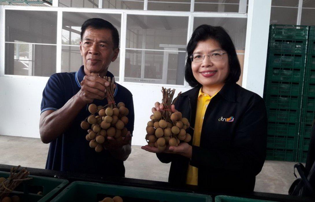 """""""เอฟทีเอ""""หนุนผลไม้ไทยบุกตลาดจีน 5 เดือนแรกยอดทะลุ 1,000 ล้านเหรียญ"""