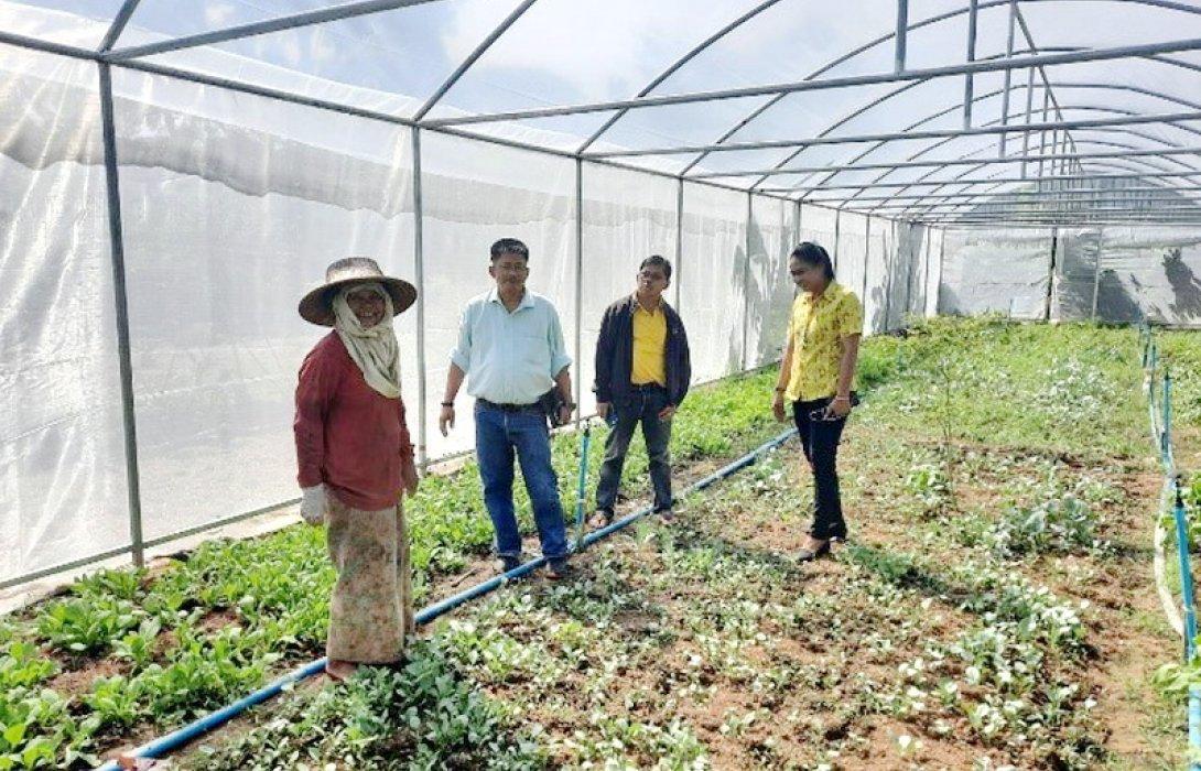 นิคมสหกรณ์เกษตรอินทรีย์ ผลิตพืชผักปลอดภัยป้อนตลาด